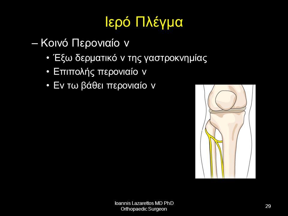 Ιερό Πλέγμα –Κοινό Περονιαίο ν Έξω δερματικό ν της γαστροκνημίας Επιπολής περονιαίο ν Εν τω βάθει περονιαίο ν Ioannis Lazarettos MD PhD Orthopaedic Surgeon 29