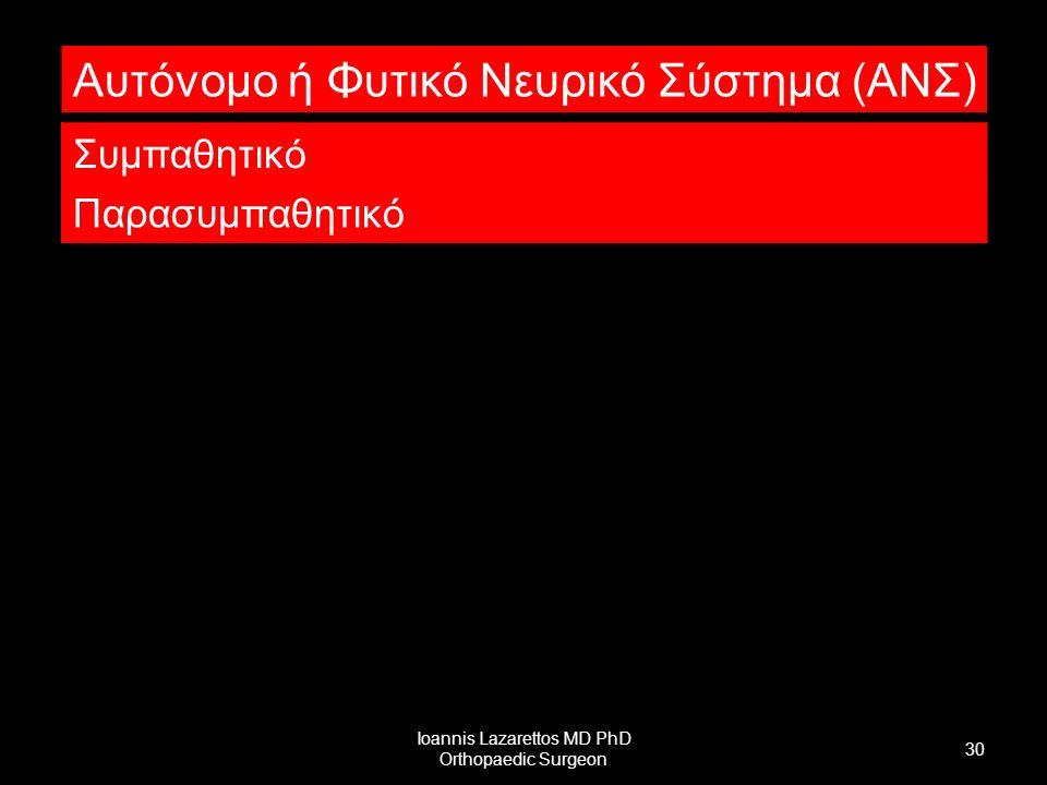 Ioannis Lazarettos MD PhD Orthopaedic Surgeon 30 Αυτόνομο ή Φυτικό Νευρικό Σύστημα (ΑΝΣ) Συμπαθητικό Παρασυμπαθητικό