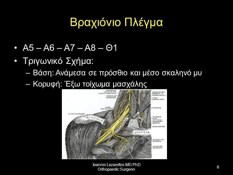 Βραχιόνιο Πλέγμα Α5 – Α6 – Α7 – Α8 – Θ1 Τριγωνικό Σχήμα: –Βάση: Ανάμεσα σε πρόσθιο και μέσο σκαληνό μυ –Κορυφή: Έξω τοίχωμα μασχάλης Ioannis Lazarettos MD PhD Orthopaedic Surgeon 8