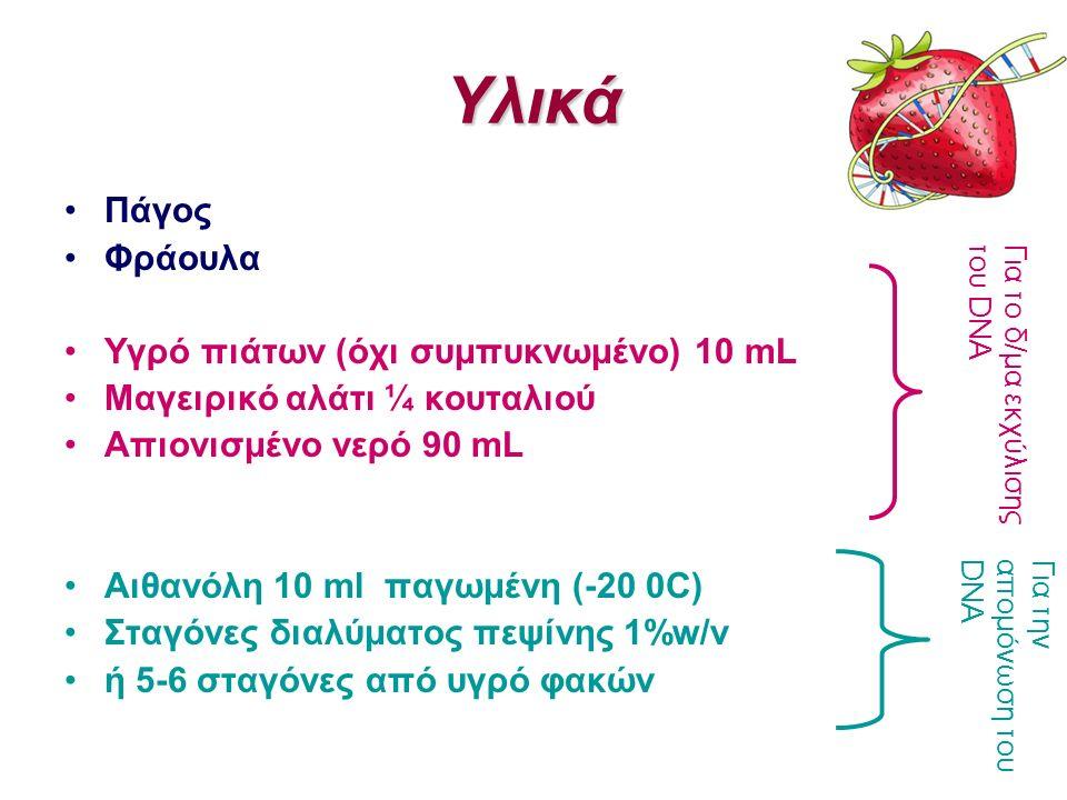 Υλικά Πάγος Φράουλα Υγρό πιάτων (όχι συμπυκνωμένο) 10 mL Μαγειρικό αλάτι ¼ κουταλιού Απιονισμένο νερό 90 mL Αιθανόλη 10 ml παγωμένη (-20 0C) Σταγόνες