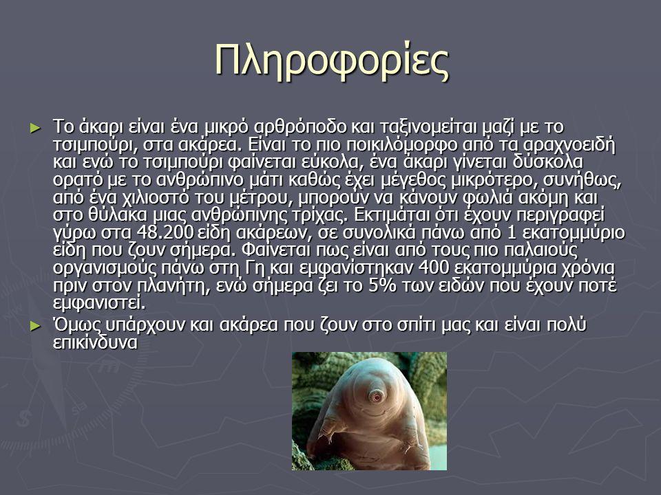 Πληροφορίες ► Το άκαρι είναι ένα μικρό αρθρόποδο και ταξινομείται μαζί με το τσιμπούρι, στα ακάρεα.