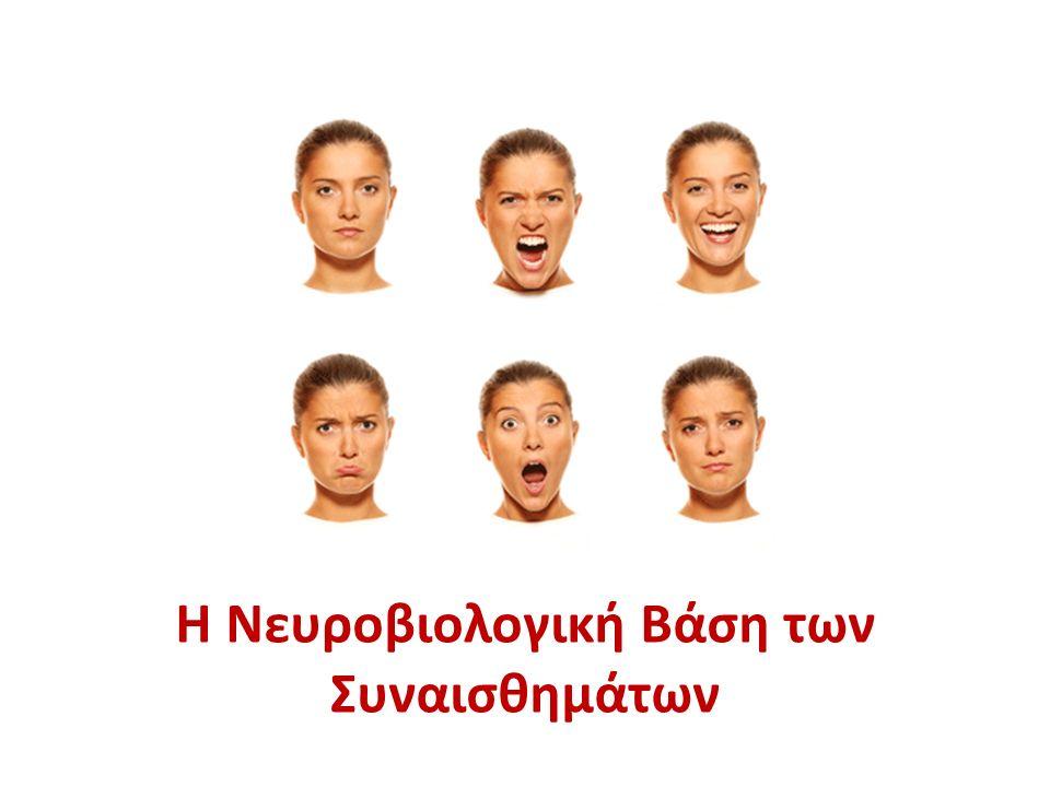 Η Νευροβιολογική Βάση των Συναισθημάτων
