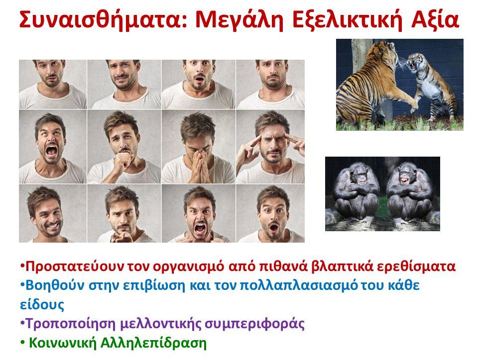 Προστατεύουν τον οργανισμό από πιθανά βλαπτικά ερεθίσματα Βοηθούν στην επιβίωση και τον πολλαπλασιασμό του κάθε είδους Τροποποίηση μελλοντικής συμπεριφοράς Κοινωνική Αλληλεπίδραση Συναισθήματα: Μεγάλη Εξελικτική Αξία