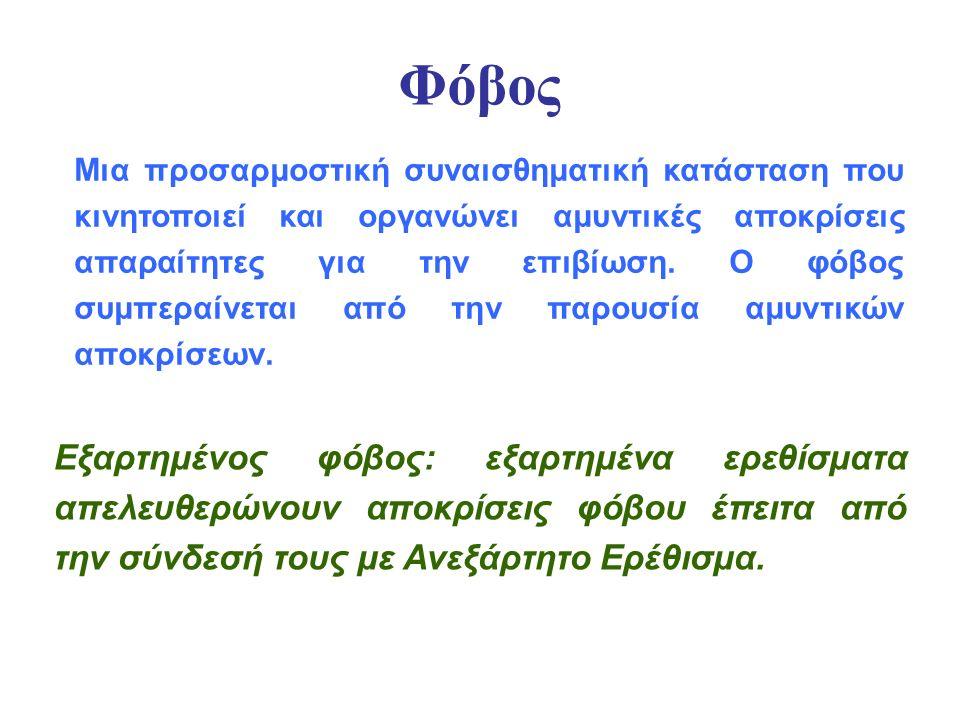 ΠΡΟΣΑΡΜΟΣΤΙΚΟ ΠΛΕΟΝΕΚΤΗΜΑ