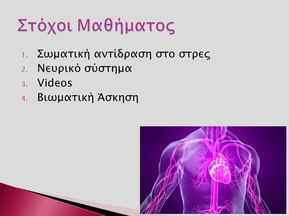 1. Σωματική αντίδραση στο στρες 2. Νευρικό σύστημα 3. Videos 4. Βιωματική Άσκηση