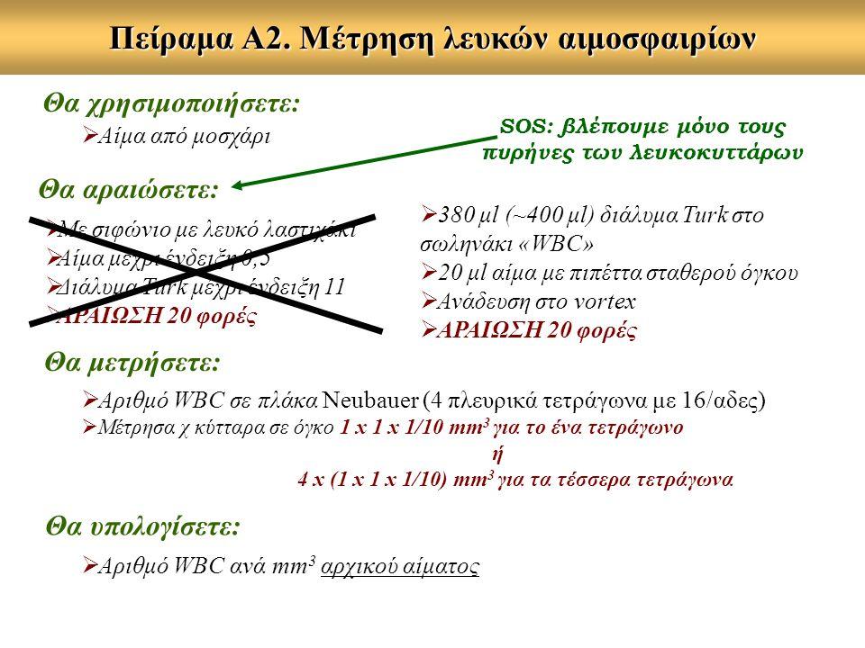 Πείραμα Α2. Μέτρηση λευκών αιμοσφαιρίων  Αριθμό WBC σε πλάκα Neubauer (4 πλευρικά τετράγωνα με 16/αδες)  Μέτρησα χ κύτταρα σε όγκο 1 x 1 x 1/10 mm 3