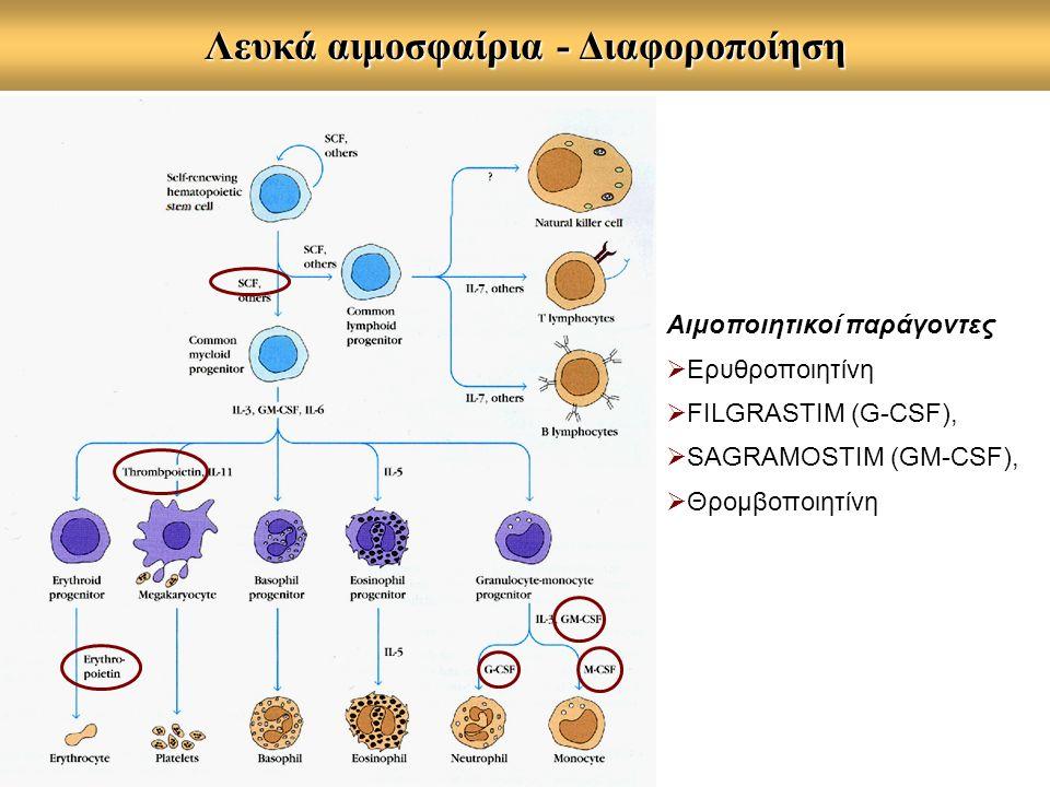 Αιμοποιητικοί παράγοντες  Ερυθροποιητίνη  FILGRASTIM (G-CSF),  SAGRAMOSTIM (GM-CSF),  Θρομβοποιητίνη Λευκά αιμοσφαίρια - Διαφοροποίηση