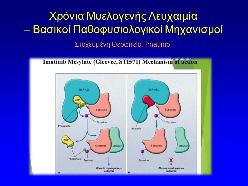 Στοχευμένη Θεραπεία: Imatinib Χρόνια Μυελογενής Λευχαιμία – Βασικοί Παθοφυσιολογικοί Μηχανισμοί