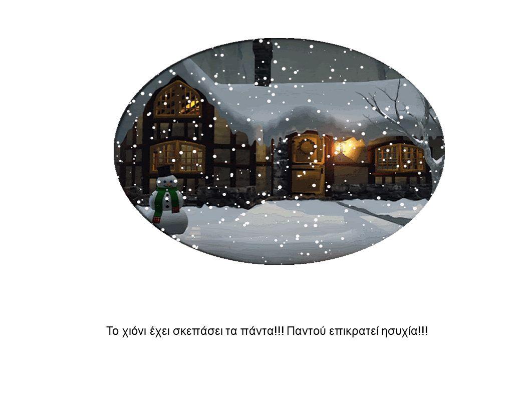 Το χιόνι έχει σκεπάσει τα πάντα!!! Παντού επικρατεί ησυχία!!!