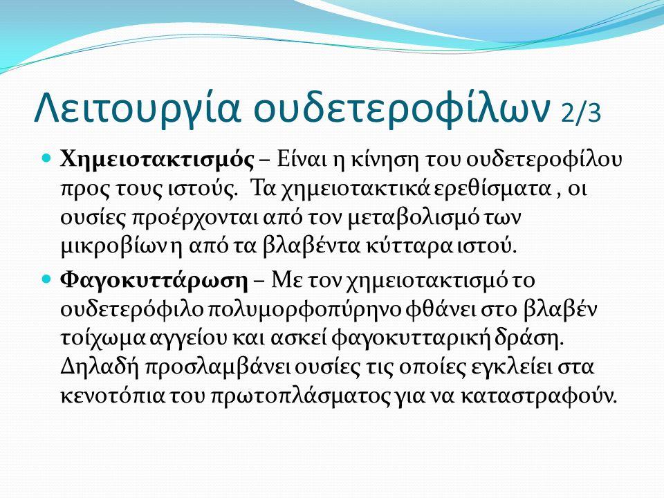 Λειτουργία ουδετεροφίλων 2/3 Χημειοτακτισμός – Είναι η κίνηση του ουδετεροφίλου προς τους ιστούς.