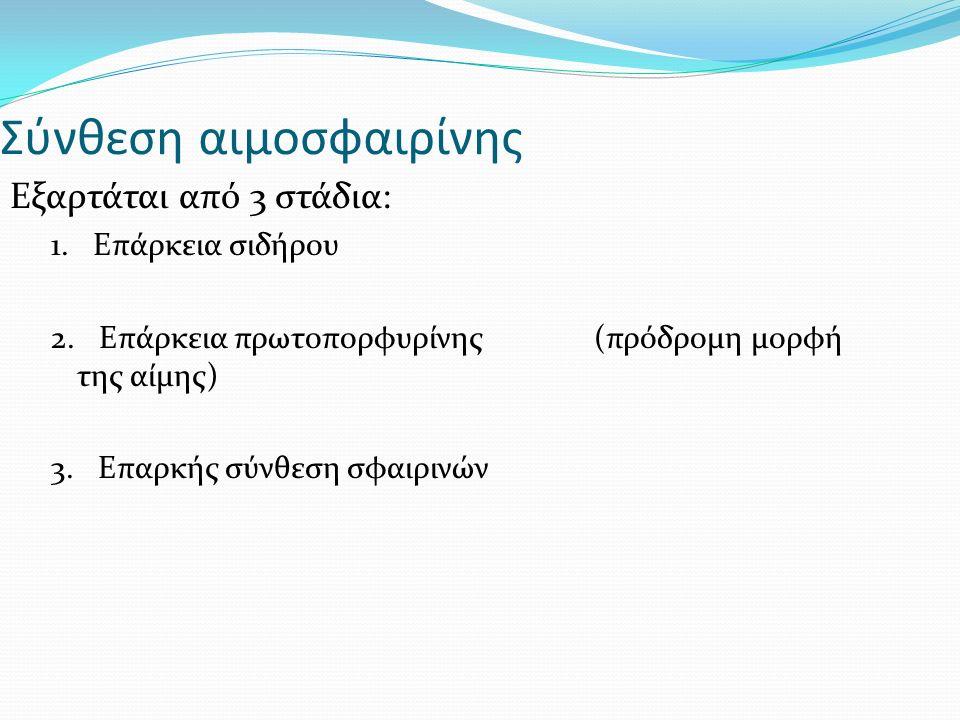 Σύνθεση αιμοσφαιρίνης Εξαρτάται από 3 στάδια: 1. Επάρκεια σιδήρου 2.