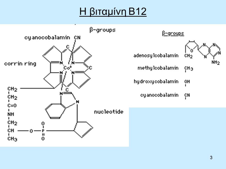 54 Αλληλεπιδράσεις με φάρμακα Άλλα φάρμακα που βρεθεί ότι αναστέλλουν την απορρόφηση βιταμίνης Β12 από τα τρόφιμα περιλαμβάνουν χολεστυραμίνη, νεομυκίνη (αντιβιοτικό) και κολχικίνη (ουρική αρθρίτιδα).