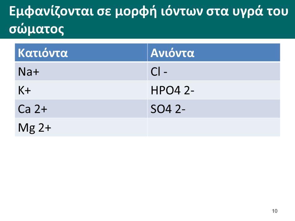Εμφανίζονται σε μορφή ιόντων στα υγρά του σώματος ΚατιόνταΑνιόντα Na+Cl - K+HPO4 2- Ca 2+SO4 2- Mg 2+ 10