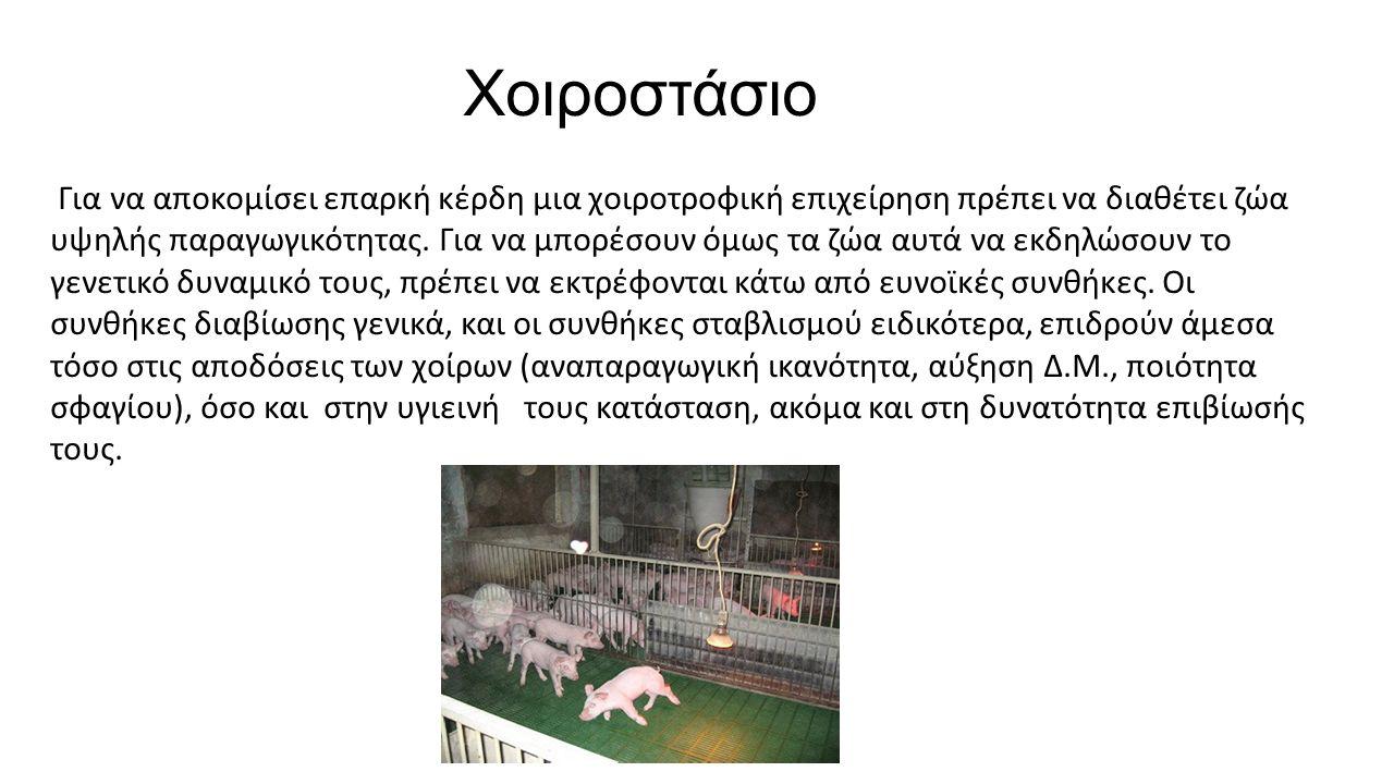Χοιροστάσιο Για να αποκομίσει επαρκή κέρδη μια χοιροτροφική επιχείρηση πρέπει να διαθέτει ζώα υψηλής παραγωγικότητας.