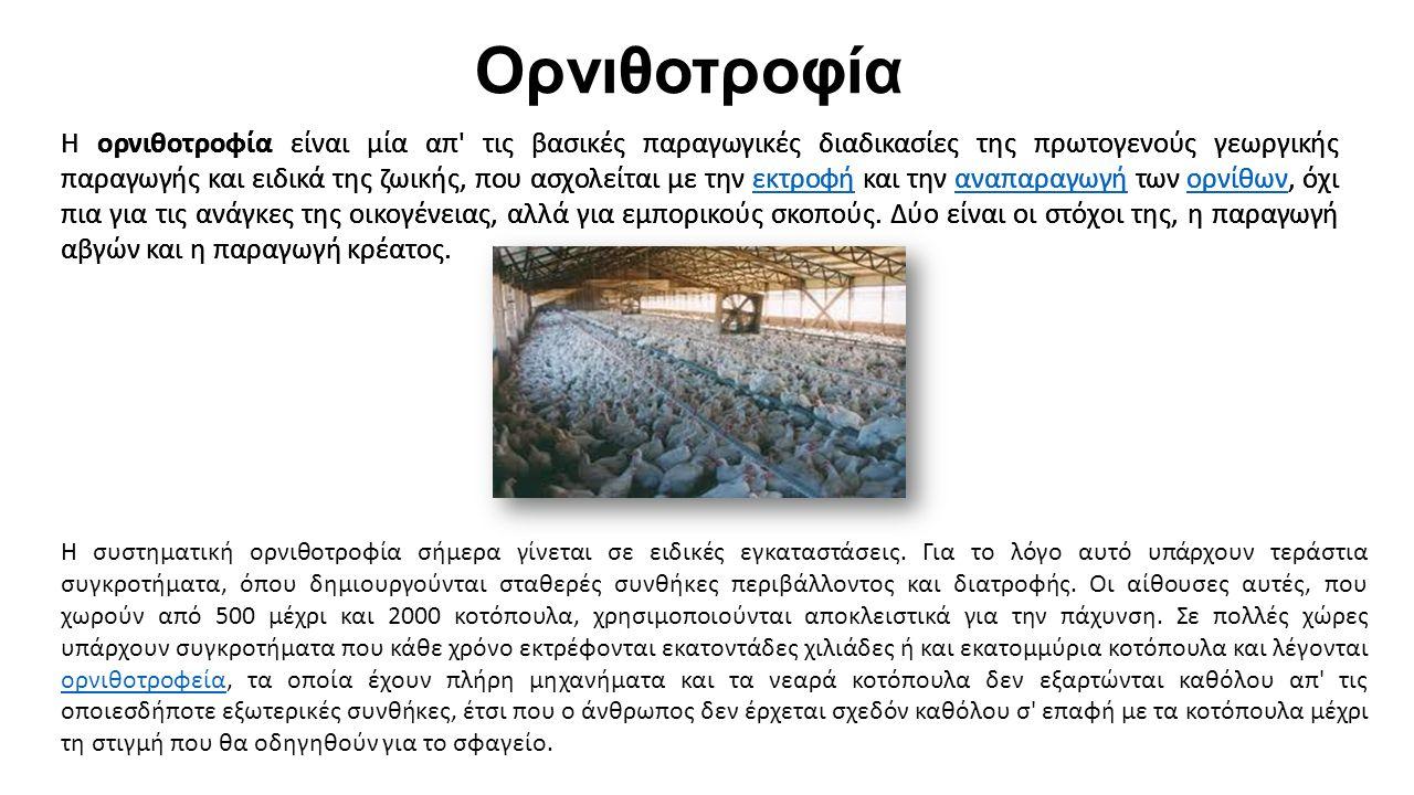 Ορνιθοτροφία Η ορνιθοτροφία είναι μία απ τις βασικές παραγωγικές διαδικασίες της πρωτογενούς γεωργικής παραγωγής και ειδικά της ζωικής, που ασχολείται με την εκτροφή και την αναπαραγωγή των ορνίθων, όχι πια για τις ανάγκες της οικογένειας, αλλά για εμπορικούς σκοπούς.