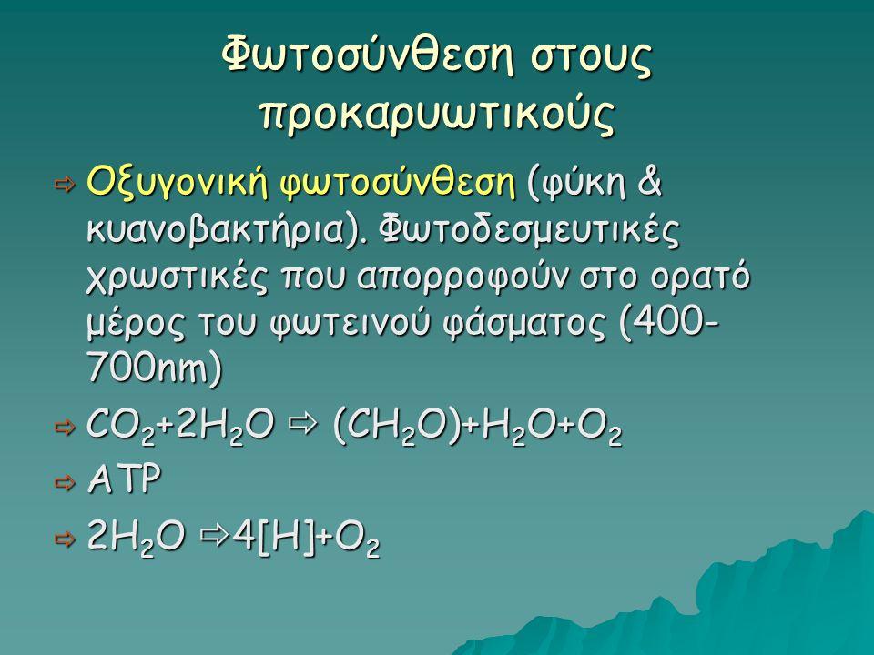 Φωτοσύνθεση στους προκαρυωτικούς  Οξυγονική φωτοσύνθεση (φύκη & κυανοβακτήρια).