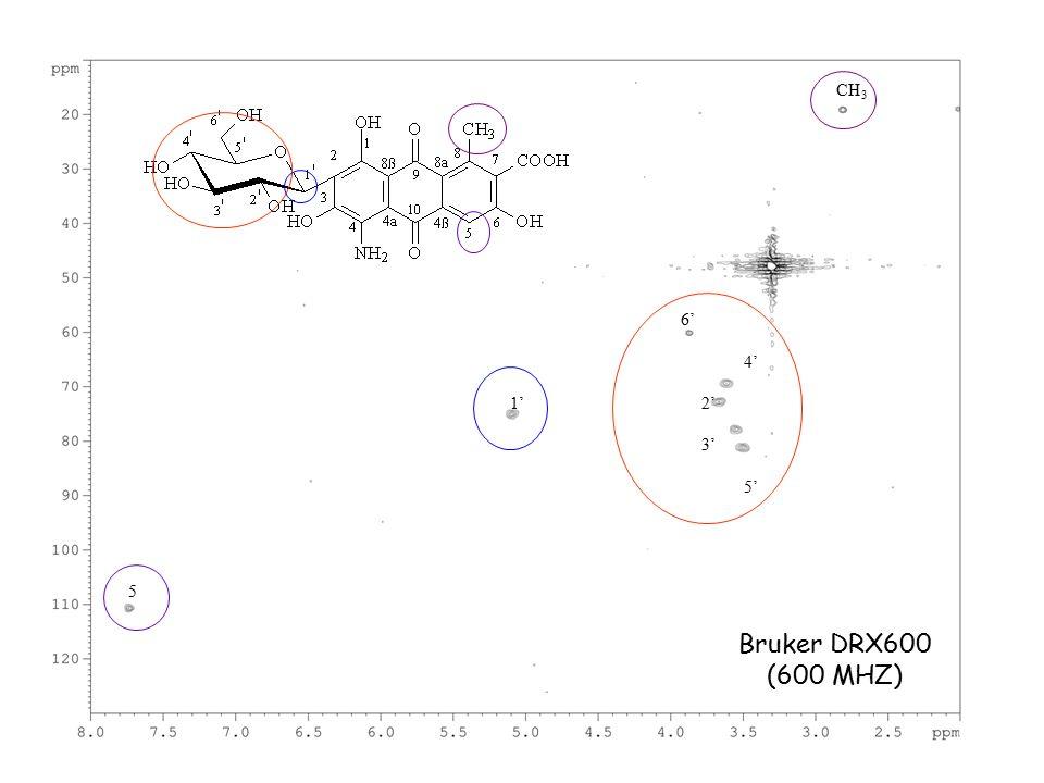 5 6' 1' 4' 2' 3' 5' CH 3 Bruker DRX600 (600 MHZ)