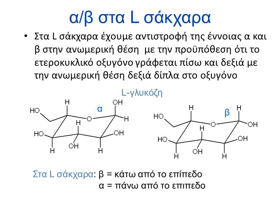 α/β στα L σάκχαρα Στα L σάκχαρα έχουμε αντιστροφή της έννοιας α και β στην ανωμερική θέση με την προϋπόθεση ότι το ετεροκυκλικό οξυγόνο γράφεται πίσω και δεξιά με την ανωμερική θέση δεξιά δίπλα στο οξυγόνο α β Στα L σάκχαρα: β = κάτω από το επίπεδο α = πάνω από το επιπεδο L-γλυκόζη
