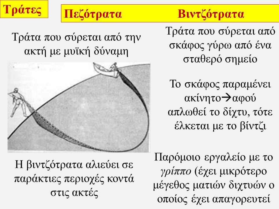 Τράτες Πεζότρατα Βιντζότρατα Τράτα που σύρεται από την ακτή με μυϊκή δύναμη Τράτα που σύρεται από σκάφος γύρω από ένα σταθερό σημείο Η βιντζότρατα αλιεύει σε παράκτιες περιοχές κοντά στις ακτές Παρόμοιο εργαλείο με το γρίππο (έχει μικρότερο μέγεθος ματιών διχτυών ο οποίος έχει απαγορευτεί Το σκάφος παραμένει ακίνητο  αφού απλωθεί το δίχτυ, τότε έλκεται με το βίντζι