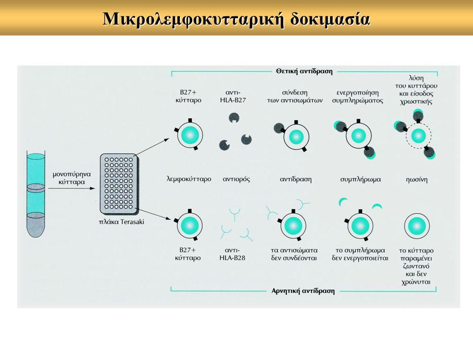 Mικρολεμφοκυτταρική δοκιμασία