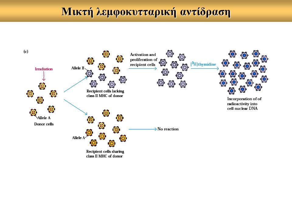 Μικτή λεμφοκυτταρική αντίδραση