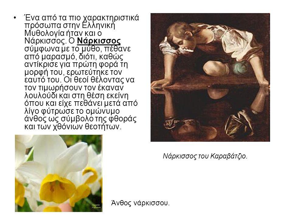 Ένα από τα πιο χαρακτηριστικά πρόσωπα στην Ελληνική Μυθολογία ήταν και ο Νάρκισσος.