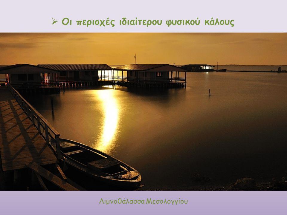  Οι περιοχές ιδιαίτερου φυσικού κάλους Λιμνοθάλασσα Μεσολογγίου