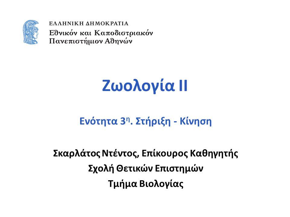 Zωολογία ΙΙ Ενότητα 3 η.