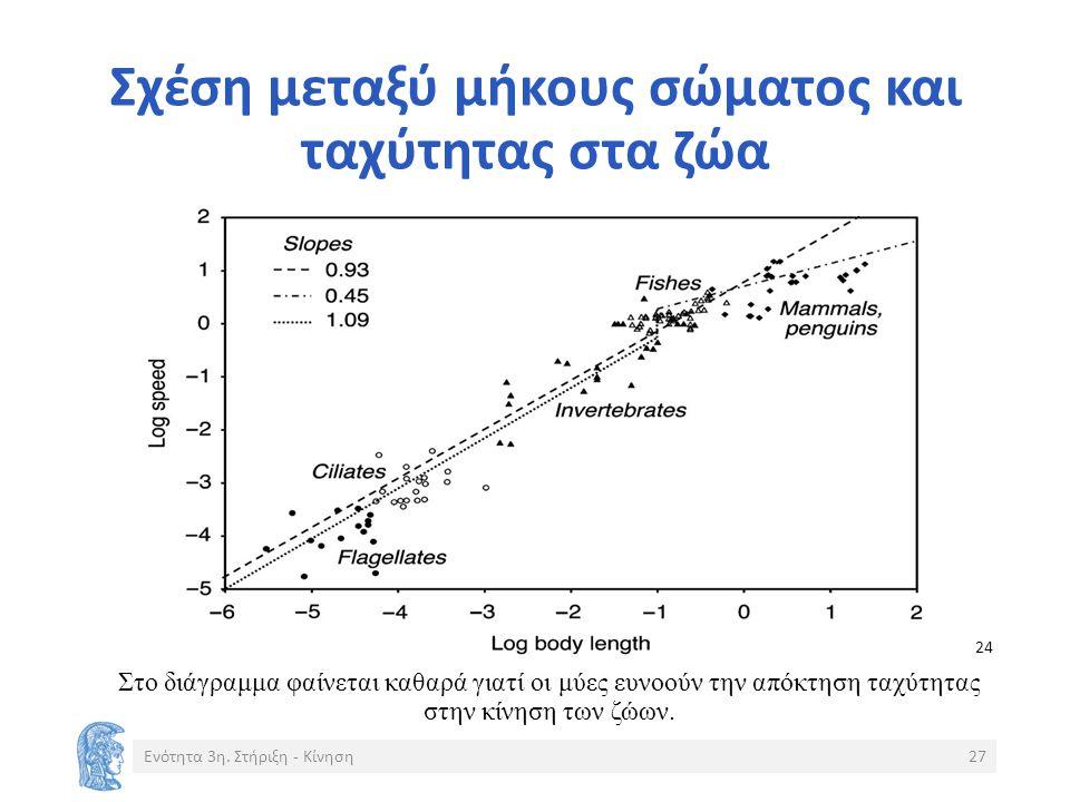 Σχέση μεταξύ μήκους σώματος και ταχύτητας στα ζώα Ενότητα 3η.