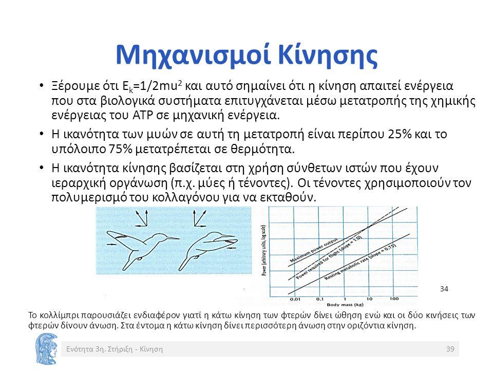 Μηχανισμοί Κίνησης Ξέρουμε ότι Ε k =1/2mu 2 και αυτό σημαίνει ότι η κίνηση απαιτεί ενέργεια που στα βιολογικά συστήματα επιτυγχάνεται μέσω μετατροπής της χημικής ενέργειας του ΑΤΡ σε μηχανική ενέργεια.
