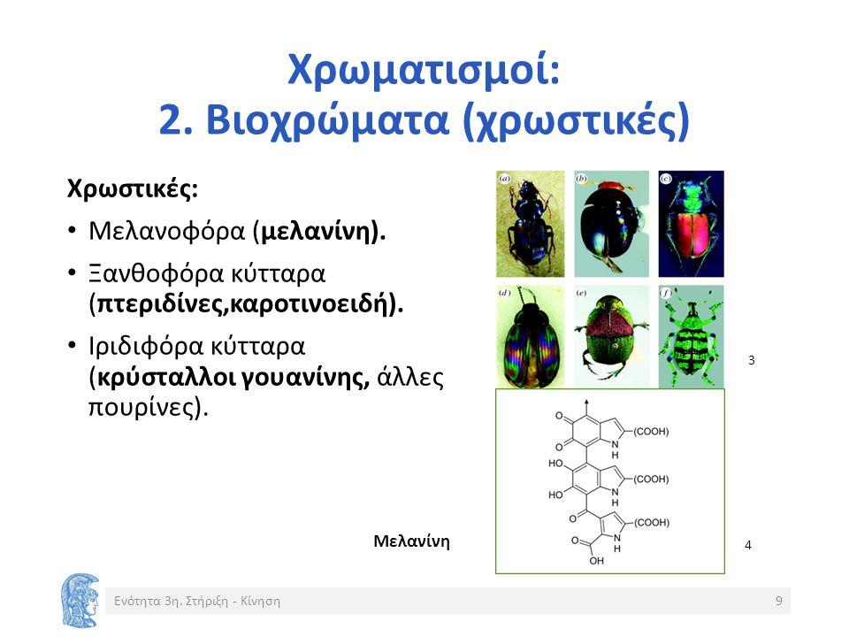 Χρωματισμοί: 2. Βιοχρώματα (χρωστικές) Χρωστικές: Μελανοφόρα (μελανίνη).