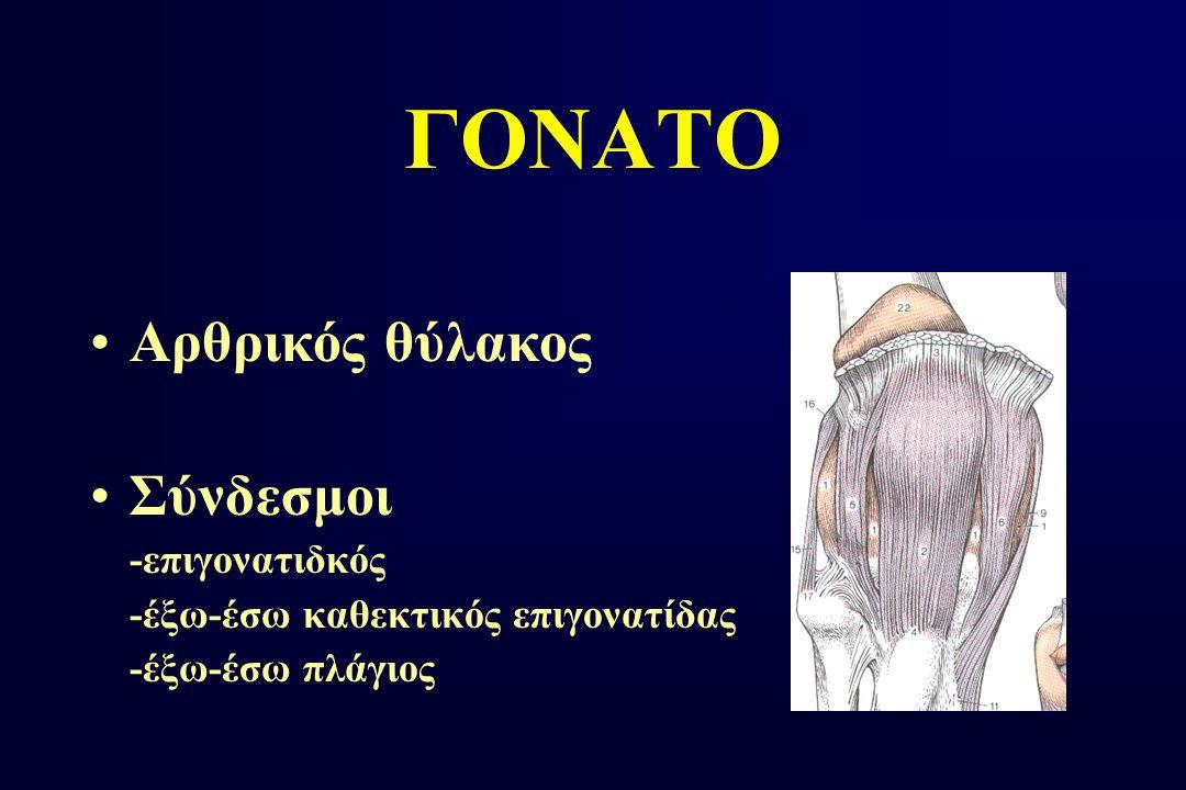 ΔΟΚΙΜΑΣΙΕΣ ΑΣΤΑΘΕΙΑΣ ΓΟΝΑΤΟΣ Οπίσθια (sag sign Οπίσθιο συρτάρι)