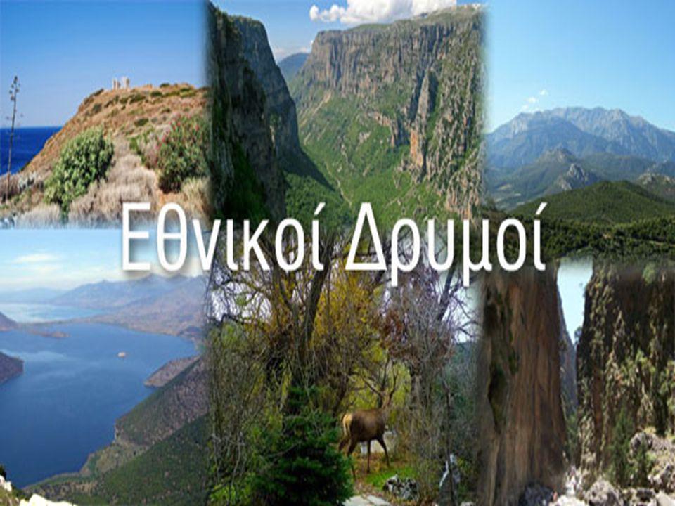  Ο Εθνικός δρυμός ή Εθνικό πάρκο είναι ένα οικοσύστημα ή βιότοπος με ιδιαίτερη οικολογική αξία που παραμένει ανεπηρέαστο ή έχει επηρεαστεί ελάχιστα από ανθρώπινες δραστηριότητες και στο οποίο διατηρείται ποικιλομορφία οικολογικών, βιολογικών, γεωμορφολογικών και αισθητικών στοιχείων.
