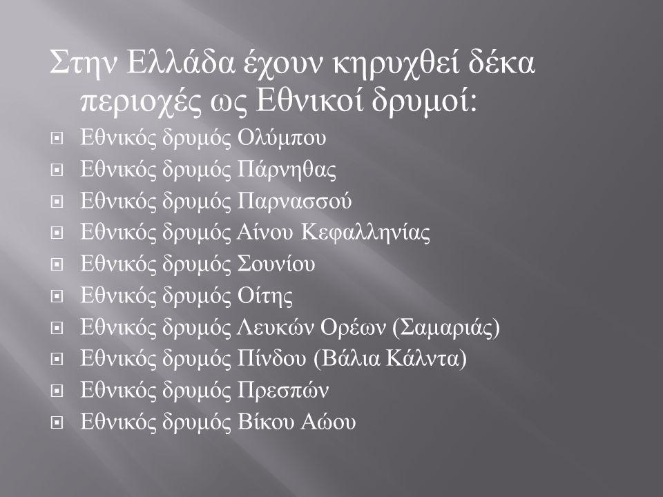 Στην Ελλάδα έχουν κηρυχθεί δέκα περιοχές ως Εθνικοί δρυμοί :  Εθνικός δρυμός Ολύμπου  Εθνικός δρυμός Πάρνηθας  Εθνικός δρυμός Παρνασσού  Εθνικός δ