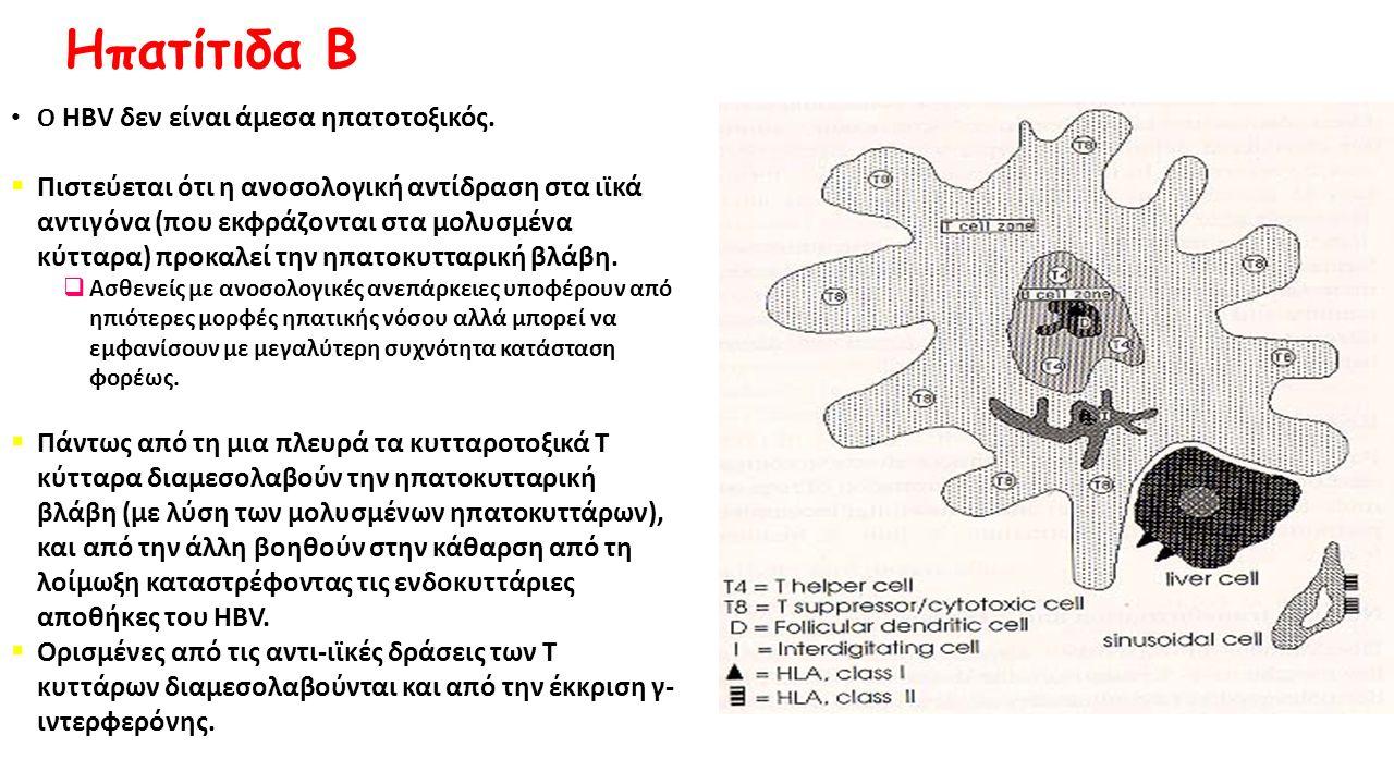 Ηπατίτιδα Β O HBV δεν είναι άμεσα ηπατοτοξικός.  Πιστεύεται ότι η ανοσολογική αντίδραση στα ιϊκά αντιγόνα (που εκφράζονται στα μολυσμένα κύτταρα) προ