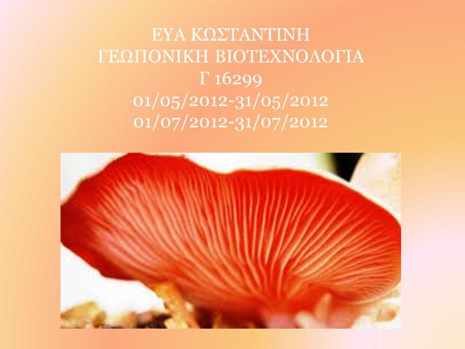 ΕΥΑ ΚΩΣΤΑΝΤΙΝΗ ΓΕΩΠΟΝΙΚΗ ΒΙΟΤΕΧΝΟΛΟΓΙΑ Γ 16299 01/05/2012-31/05/2012 01/07/2012-31/07/2012