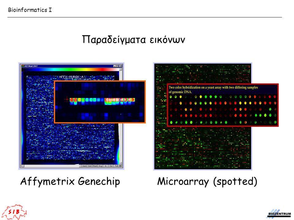Affymetrix GenechipMicroarray (spotted) Παραδείγματα εικόνων Bioinformatics I