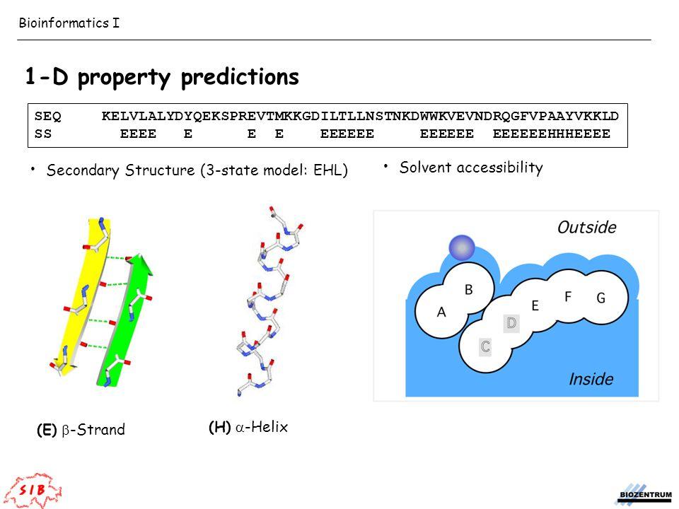 Secondary Structure (3-state model: EHL) Solvent accessibility (E)  -Strand (H)  -Helix 1-D property predictions SEQKELVLALYDYQEKSPREVTMKKGDILTLLNSTNKDWWKVEVNDRQGFVPAAYVKKLD SS EEEE E E E EEEEEE EEEEEE EEEEEEHHHEEEE Bioinformatics I