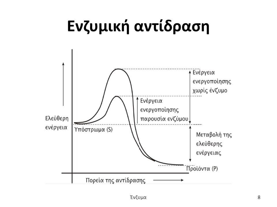 Ενζυμική αντίδραση Ένζυμα8