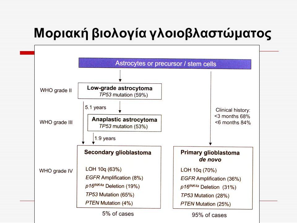 Μοριακή βιολογία γλοιοβλαστώματος
