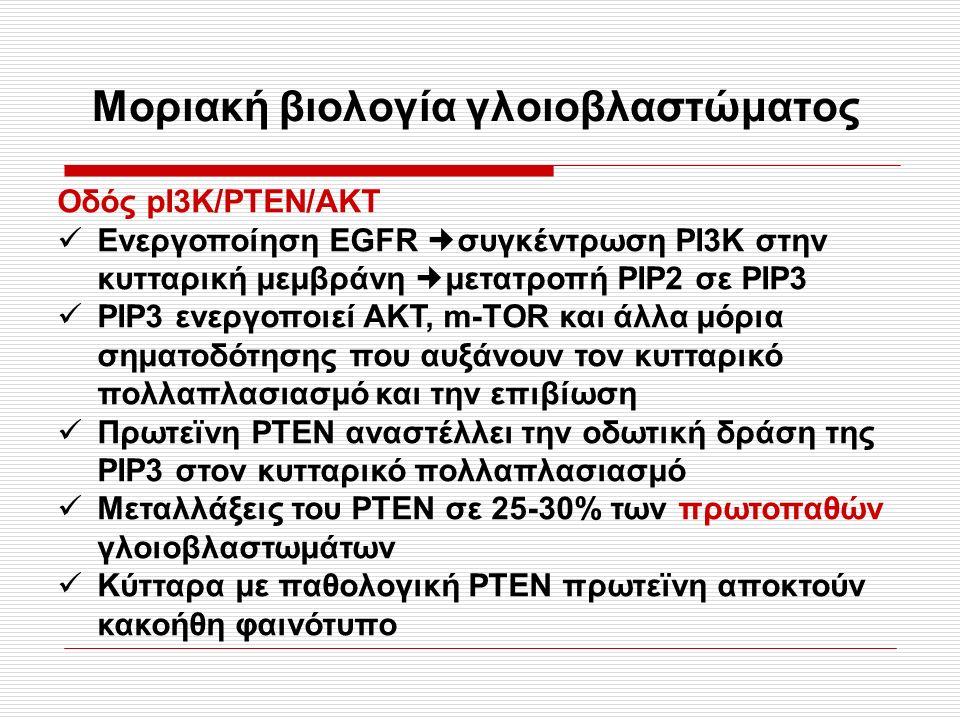Μοριακή βιολογία γλοιοβλαστώματος Οδός pΙ3K/PTEN/AKT Ενεργοποίηση EGFR συγκέντρωση ΡΙ3Κ στην κυτταρική μεμβράνη μετατροπή ΡΙΡ2 σε ΡΙΡ3 ΡΙΡ3 ενεργοποιεί ΑΚΤ, m-TΟR και άλλα μόρια σηματοδότησης που αυξάνουν τον κυτταρικό πολλαπλασιασμό και την επιβίωση Πρωτεϊνη ΡΤΕΝ αναστέλλει την οδωτική δράση της ΡΙΡ3 στον κυτταρικό πολλαπλασιασμό Μεταλλάξεις του ΡΤΕΝ σε 25-30% των πρωτοπαθών γλοιοβλαστωμάτων Κύτταρα με παθολογική ΡΤΕΝ πρωτεϊνη αποκτούν κακοήθη φαινότυπο