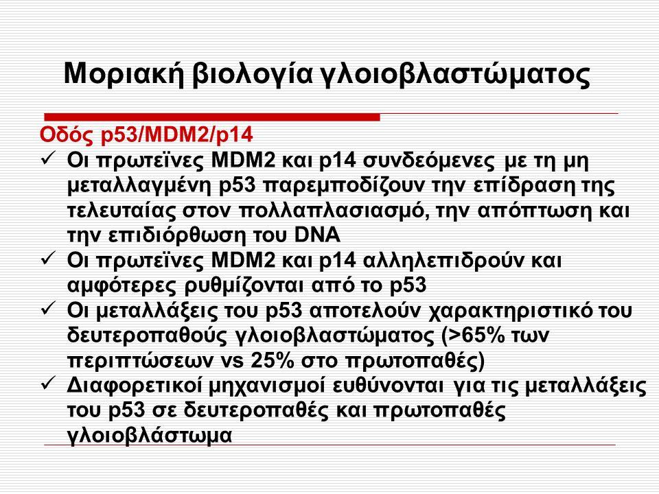 Μοριακή βιολογία γλοιοβλαστώματος Οδός p53/MDM2/p14 Οι πρωτεϊνες ΜDM2 και p14 συνδεόμενες με τη μη μεταλλαγμένη p53 παρεμποδίζουν την επίδραση της τελευταίας στον πολλαπλασιασμό, την απόπτωση και την επιδιόρθωση του DNA Οι πρωτεϊνες MDM2 και p14 αλληλεπιδρούν και αμφότερες ρυθμίζονται από το p53 Οι μεταλλάξεις του p53 αποτελούν χαρακτηριστικό του δευτεροπαθούς γλοιοβλαστώματος (>65% των περιπτώσεων vs 25% στο πρωτοπαθές) Διαφορετικοί μηχανισμοί ευθύνονται για τις μεταλλάξεις του p53 σε δευτεροπαθές και πρωτοπαθές γλοιοβλάστωμα