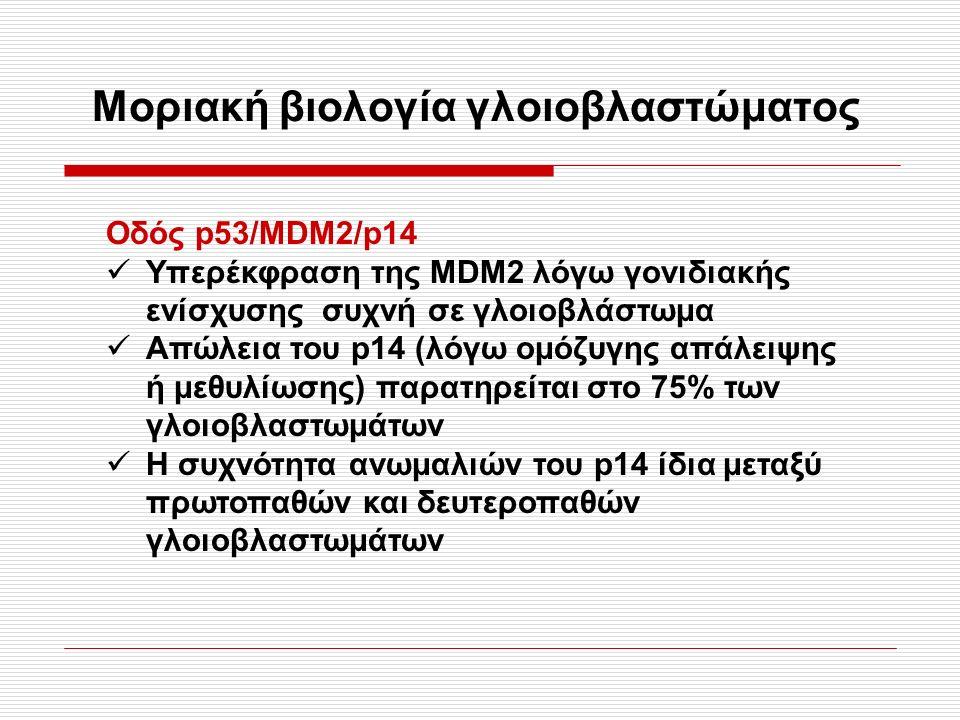 Μοριακή βιολογία γλοιοβλαστώματος Οδός p53/MDM2/p14 Υπερέκφραση της ΜDΜ2 λόγω γονιδιακής ενίσχυσης συχνή σε γλοιοβλάστωμα Απώλεια του p14 (λόγω ομόζυγης απάλειψης ή μεθυλίωσης) παρατηρείται στο 75% των γλοιοβλαστωμάτων Η συχνότητα ανωμαλιών του p14 ίδια μεταξύ πρωτοπαθών και δευτεροπαθών γλοιοβλαστωμάτων