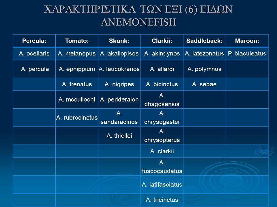 ΧΑΡΑΚΤΗΡΙΣΤΙΚΑ ΤΩΝ ΕΞΙ (6) ΕΙΔΩΝ ANEMONEFISH Percula:Tomato:Skunk:Clarkii:Saddleback:Maroon: A.