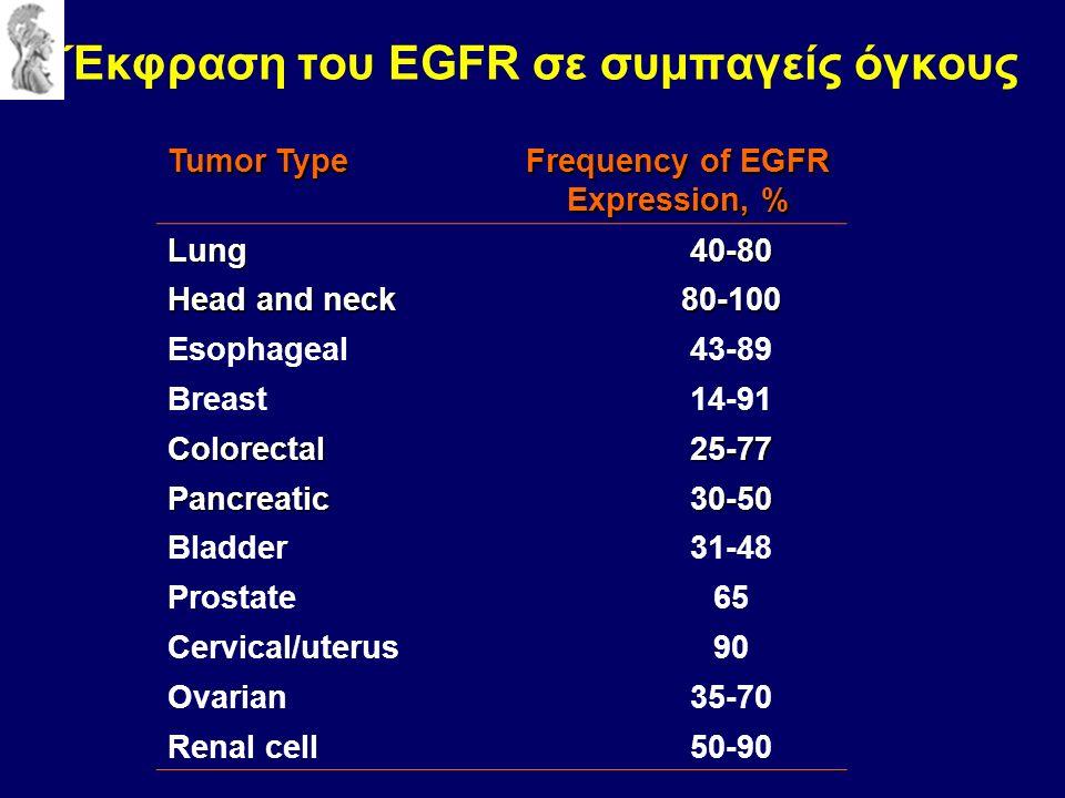 Έκφραση του EGFR σε συμπαγείς όγκους Tumor Type Frequency of EGFR Expression, % Lung40-80 Head and neck 80-100 Esophageal43-89 Breast14-91 Colorectal25-77 Pancreatic30-50 Bladder31-48 Prostate65 Cervical/uterus90 Ovarian35-70 Renal cell50-90