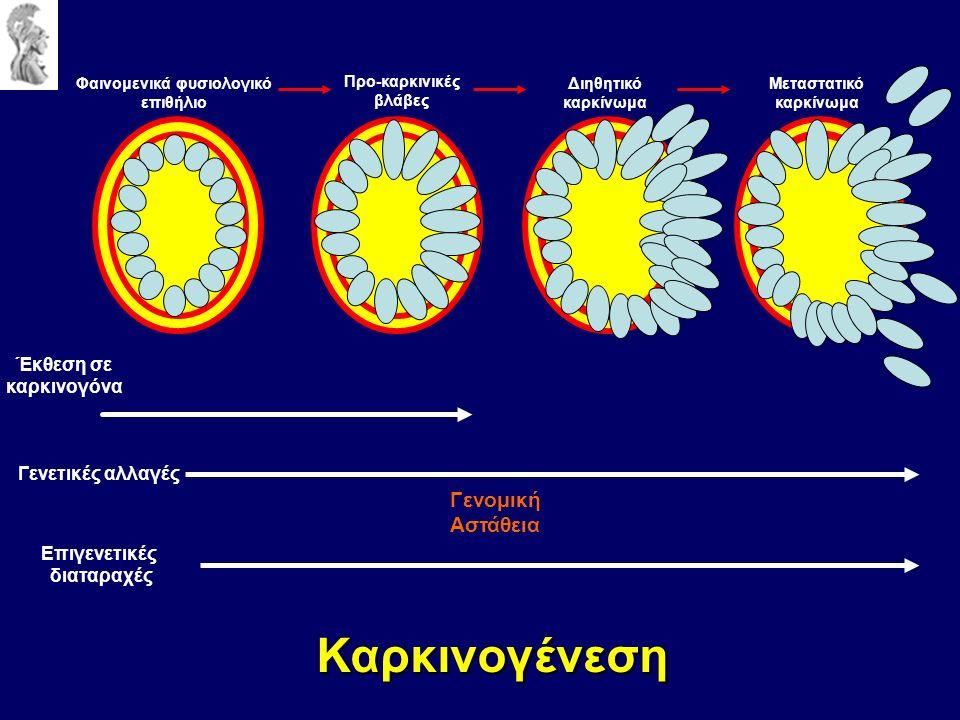 Καρκινογένεση