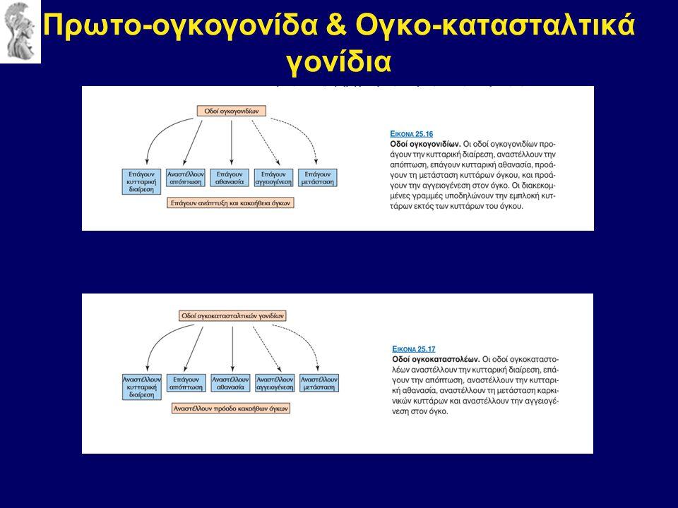 Πρωτο-ογκογονίδα & Ογκο-κατασταλτικά γονίδια