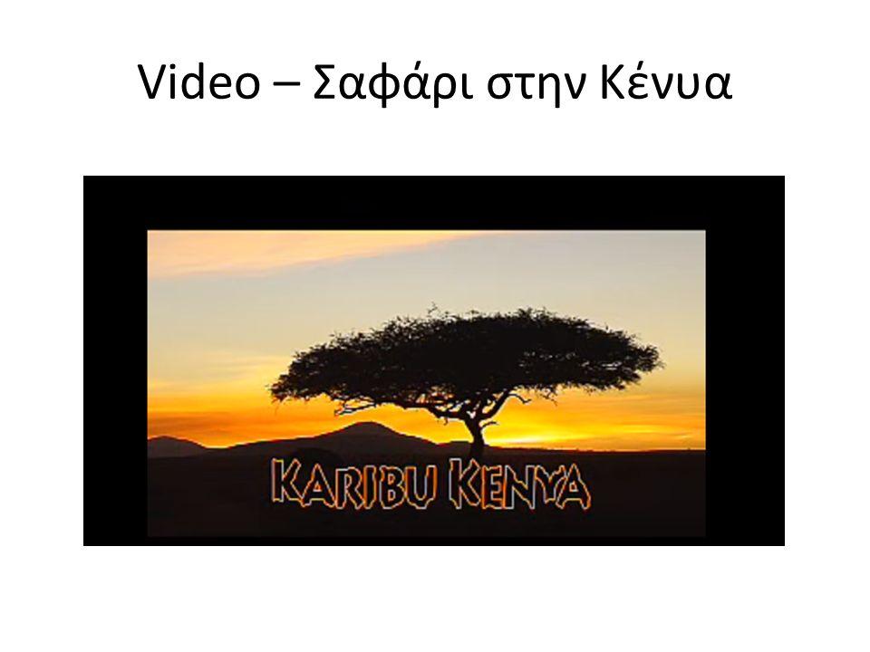 Video – Σαφάρι στην Κένυα