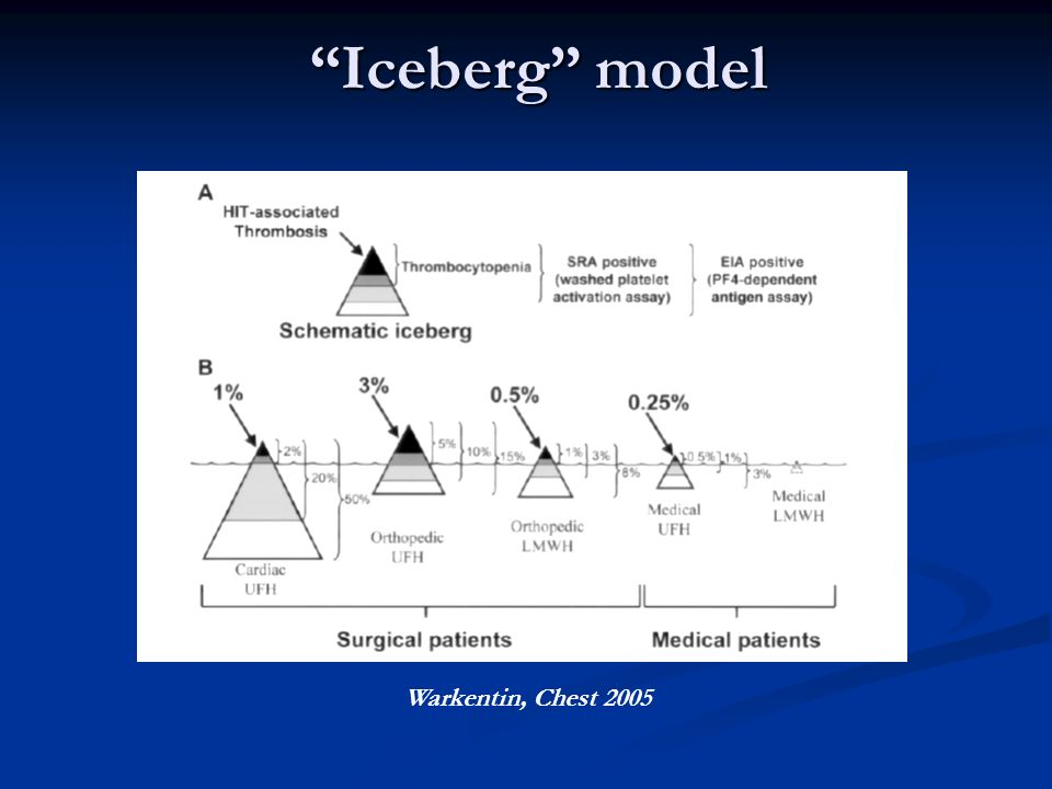 """Iceberg"" model Warkentin, Chest 2005"