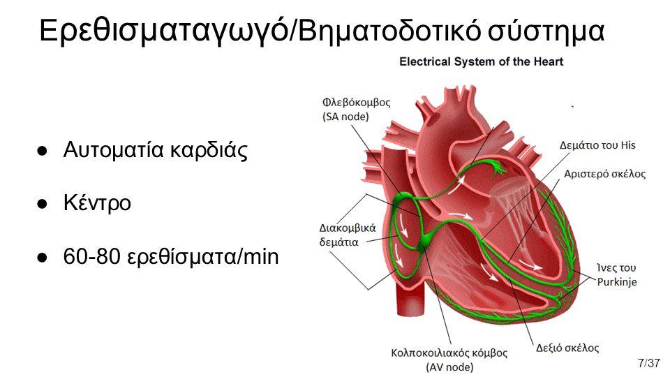 ●Αυτοματία καρδιάς ●Κέντρο ●60-80 ερεθίσματα/min 7/37 E ρεθισματαγωγό /Bηματοδοτικό σύστημα